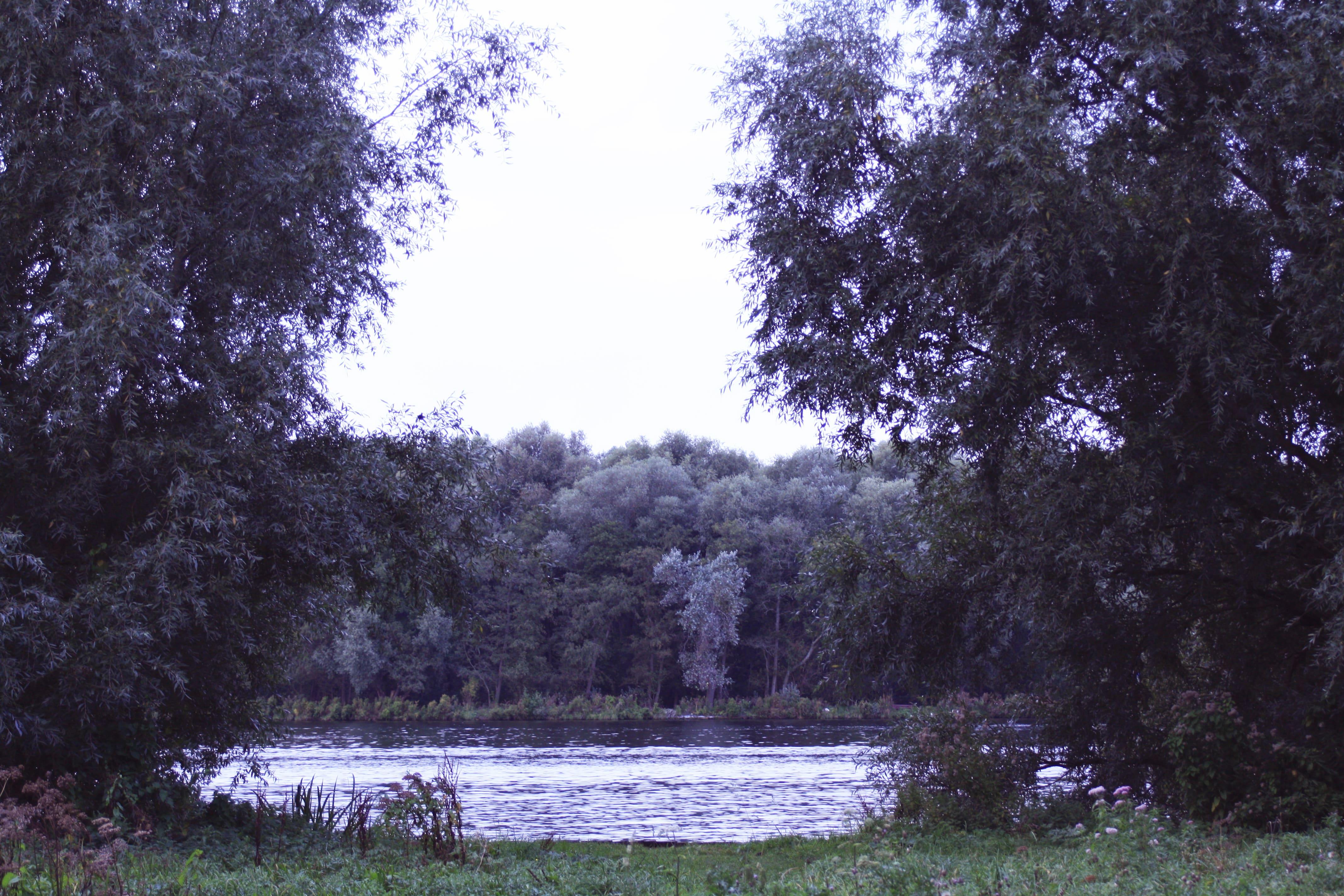 _MG_2808 Kopie-min