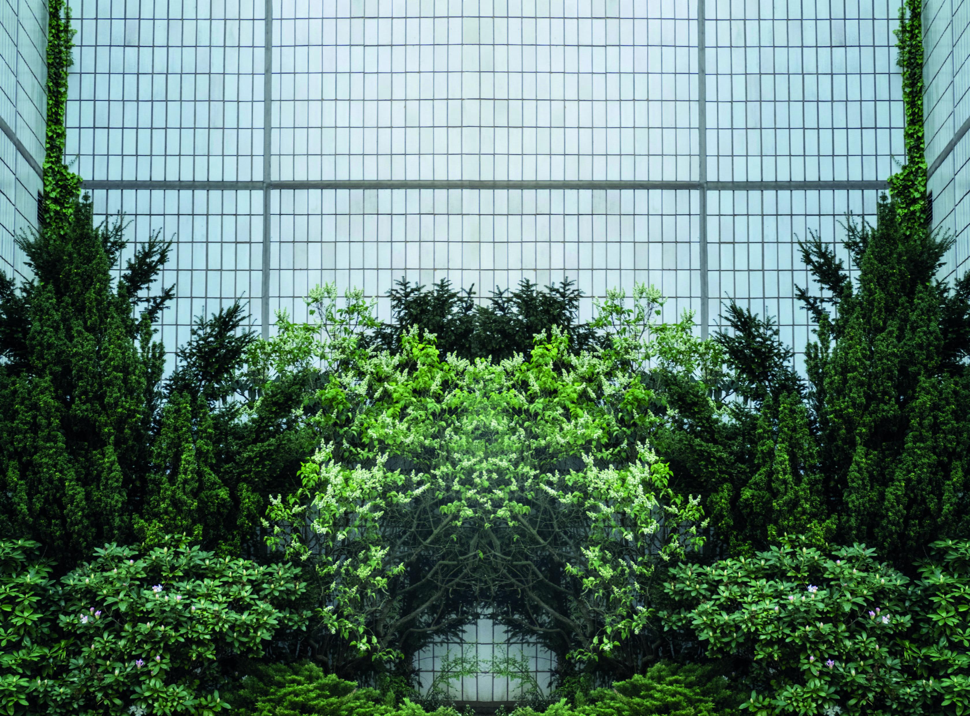 mirrored green-min